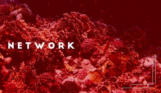 Creativita_network