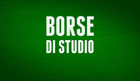 borse_distudio