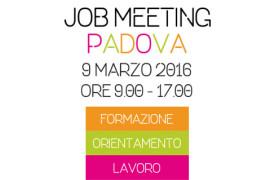 job-meeting-miniatura