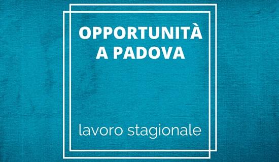 lavoro_stagionale_guida (6)