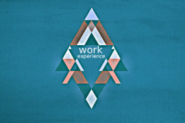 work_experience-3
