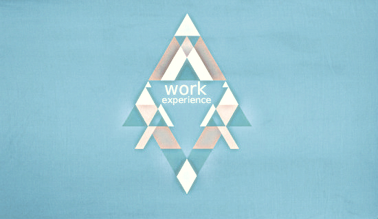 work_experience-5